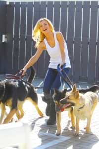 **EXCLUSIVE**  'Real Housewives of Miami' star Joanna Krupa volunteers her time with rescue German Shepherds in Los Angeles
